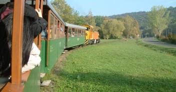 Királyrét_Forest_Railway_between_Kismaros_and_Szokolya