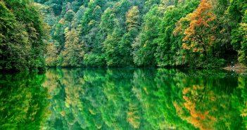 Illusztráció, a felvételen a Hámori-tó látható