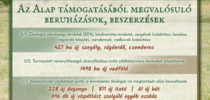 omvk_palyazat