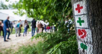 Fotó: ÉSZAKERDŐ Erdőgazdasági Zrt.