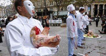 Vegán tüntetés Franciaországban – Forrás: The Local