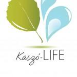 kaszo-life logo color